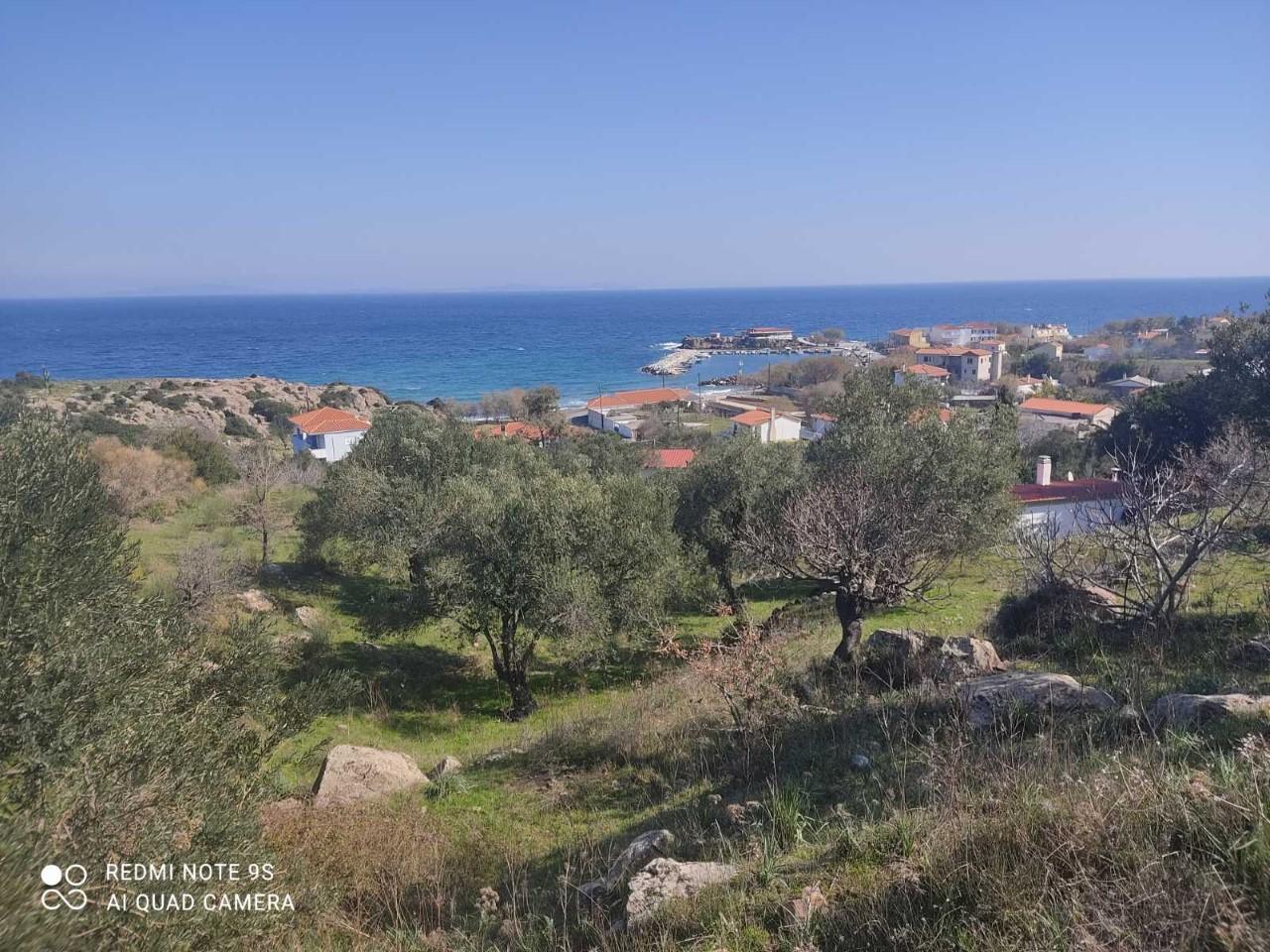 Grundstück am Meer in Lesbos 1890 qm erschlossen